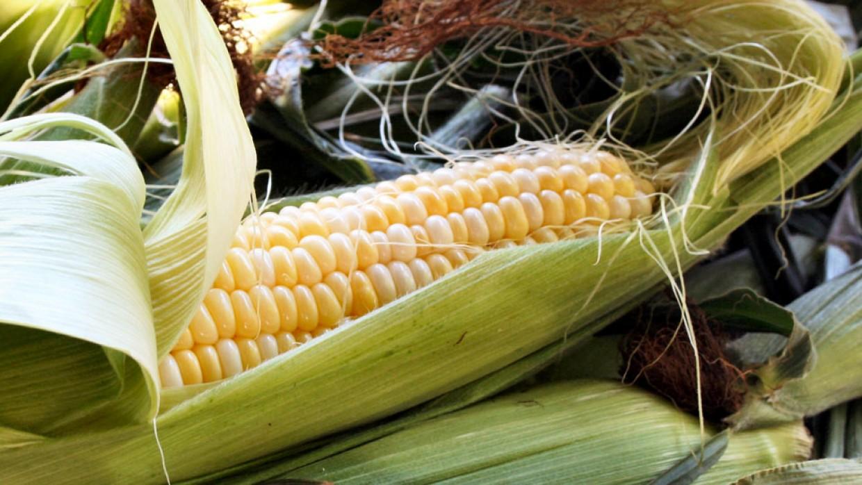 Fresh Deals: Local Sweet Corn 79¢ each
