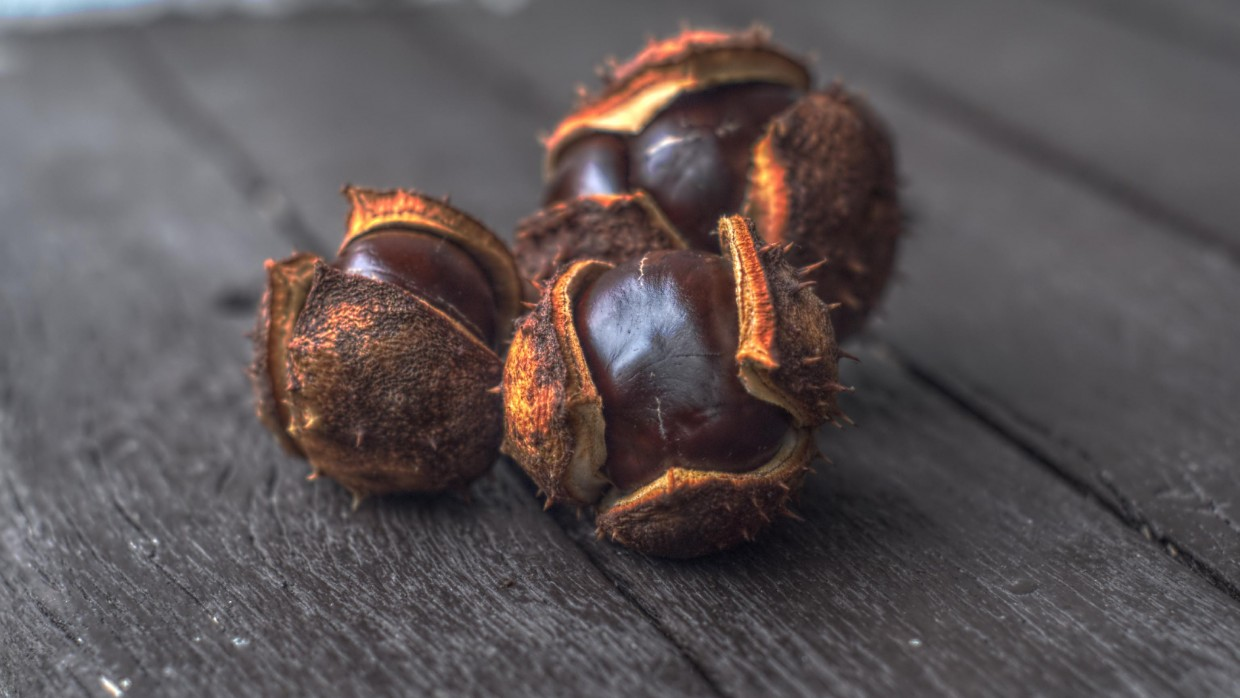 What's Fresh? Chestnuts!