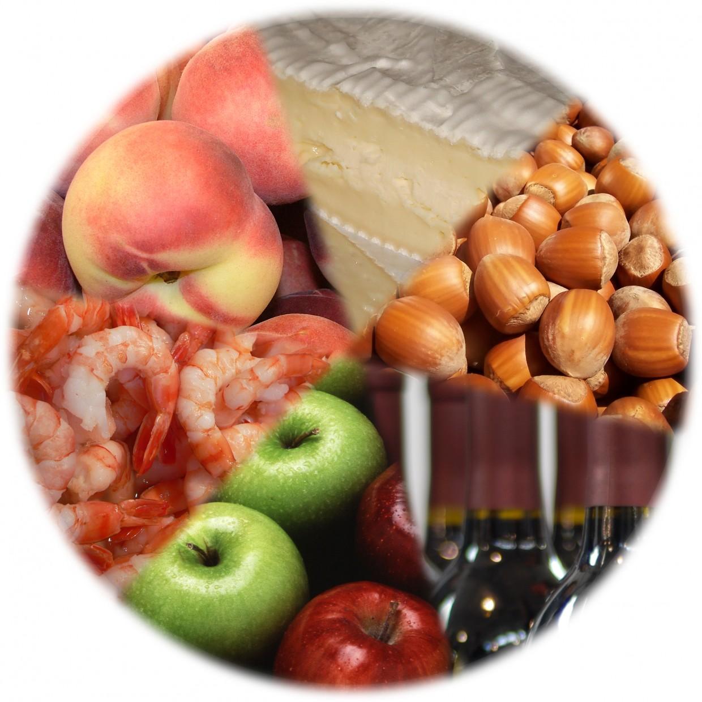 Understanding Food Allergies