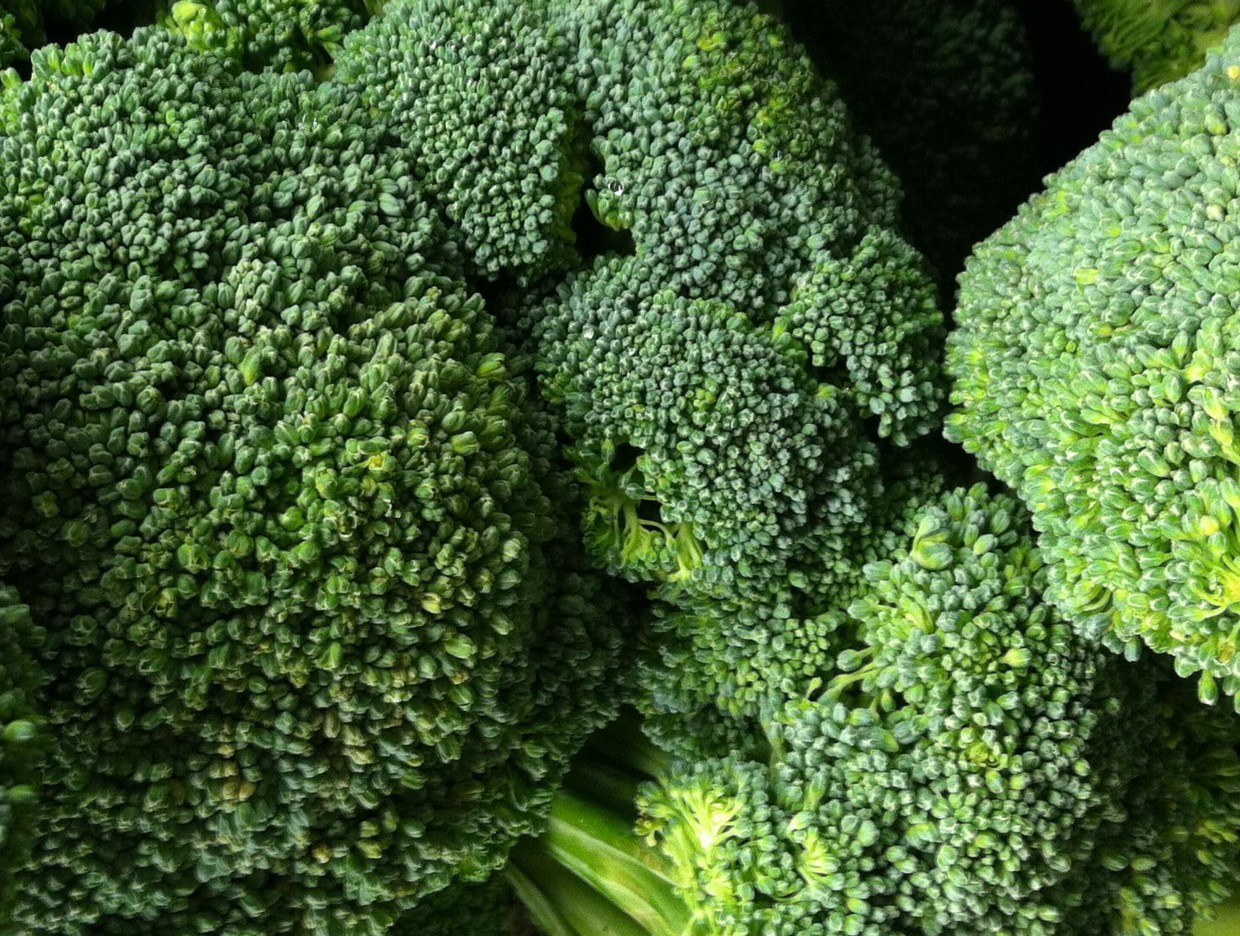 What's Fresh? Broccoli!