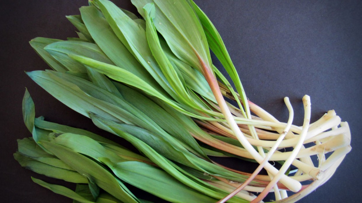What's Fresh? Ramps!