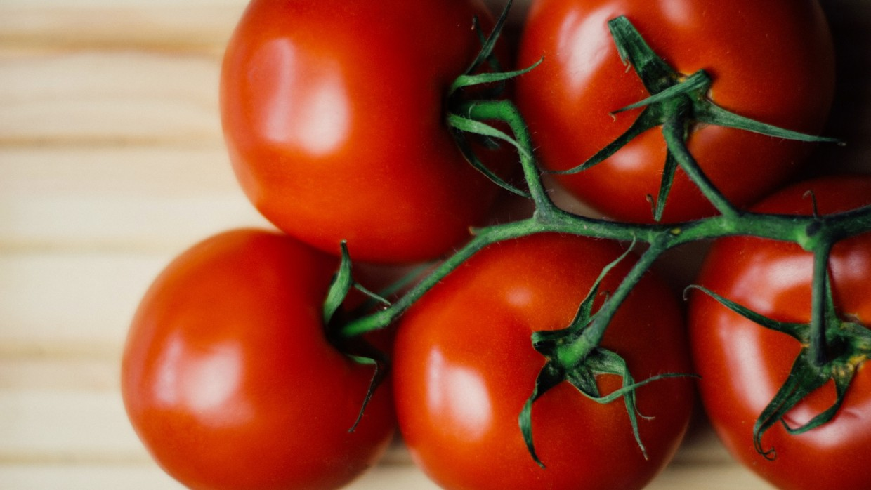 Get to Know Tomatoes