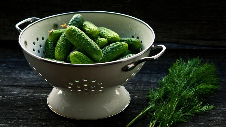 What's Fresh? Cucumbers!