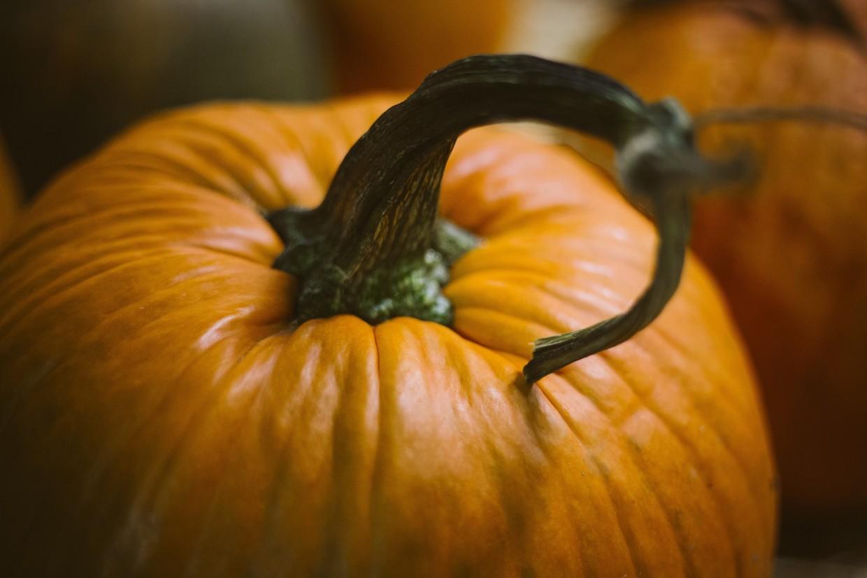 What's Fresh? Pumpkins!