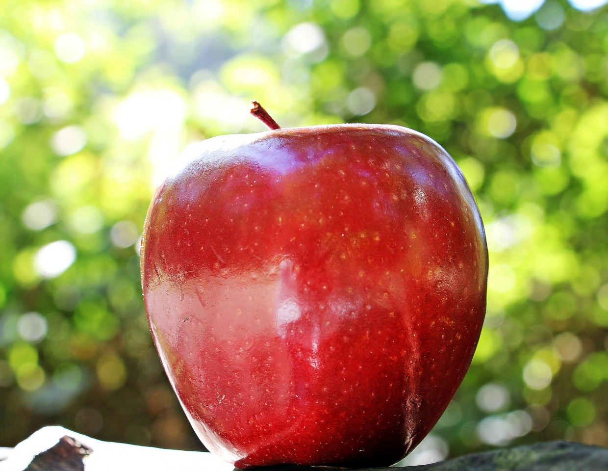 Apples Provide Powerful Health Benefits