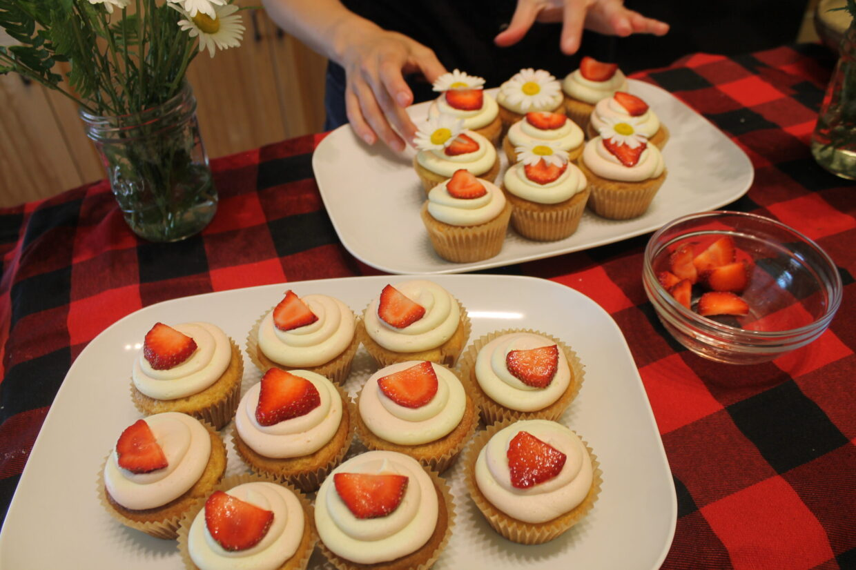 Cool Cupcakes for Summer!